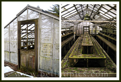 Greenhouse(wm)